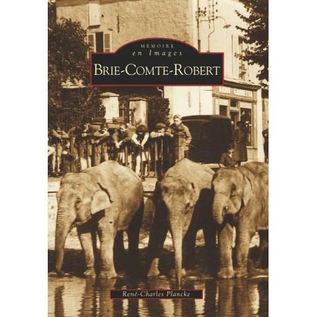 Brie-Comte-Robert Recto