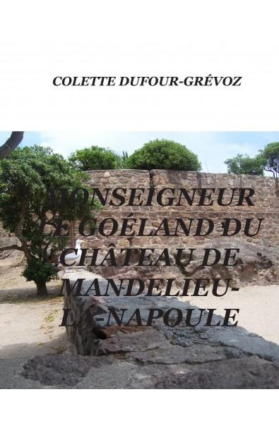 Monseigneur le goéland du château de Mandelieu-la-Napoule
