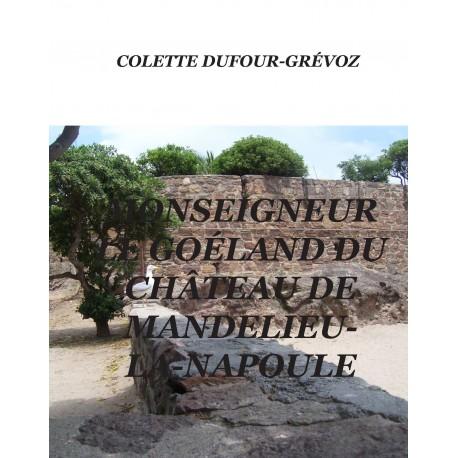 Monseigneur le goéland du château de Mandelieu-la-Napoule Recto